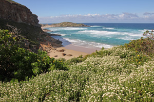 View of the Indian Ocean from the trail at Robberg.
