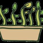 Plant Propagation Icon