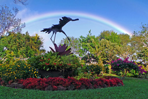 Rainbow over the gardens behind Hotel Bougainvillea.
