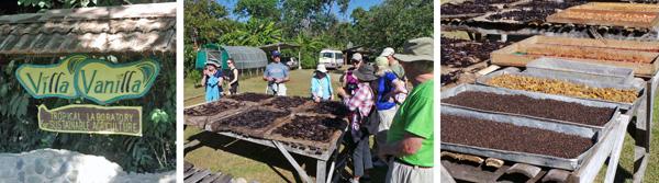 Villa Vanilla (L); vanilla beans drying on racks in the sun (C); trays of black pepper, turmeric and cacao beans drying in the sun (R).