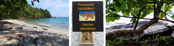 One of the five beaches at Manuel Antonio National Park (L); sign warning of crocodiles on the beach (C), and the 8 foot long croc on the sand (R).