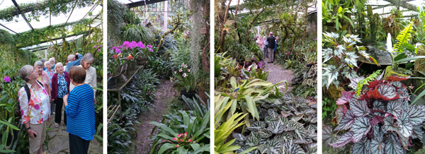 Ileana tells the group about some of the orchids (L) in the larger greenhouse (LC) filled with lush foliage and fountains (RC and R).