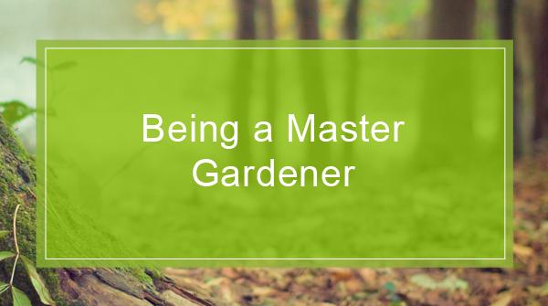 Master Gardener Program U2013 University Of Wisconsin Extension
