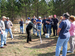 Celebrate Arbor Day at a group activity or event.