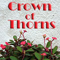 Crown of Thorns Title Image