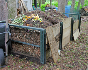 Leaves and other plant debris can be disposed of by composting.
