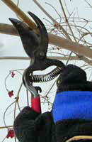 Late fall and winter are the best times to prune most woody ornamentals.