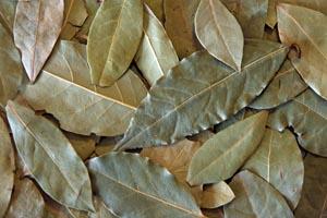 Dried bay leaves.