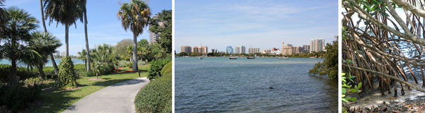 The Baywalk (L) offers views of the city of Sarasota (C) and the mangroves that grow along the waters edge (R).