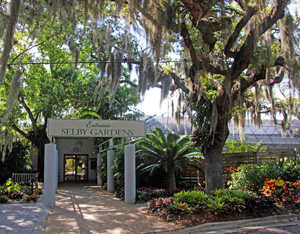 The entrance to the gardens is shaded by Spanish moss-draped trees.