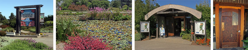 The highway entrance (L); pond filled with waterlilies and blooming Dierama (pink flowers) on the central island (LC); the main entrance to the Garden (RC) and the ornate door to the reception building (R).