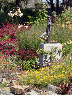 The grounds of the Mendocino Botanic Garden have been gradually developed over 45 years
