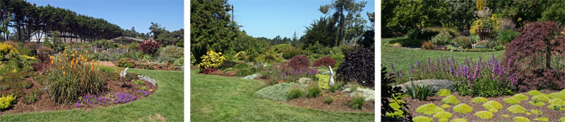 Beds are filled with a variety of herbaceous plants and a few small trees and shrubs