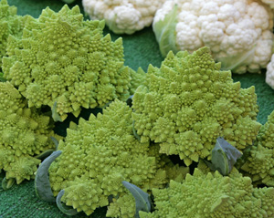 Romanesco heads for sale at a Farmers Market.