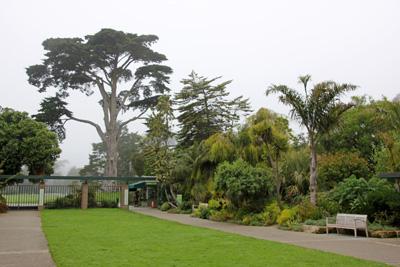The Entrance To The San Francisco Botanical Garden.