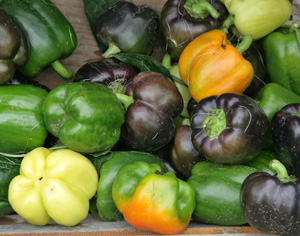 Bells are sweet peppers with a blocky shape, and come in many colors from off-white to purple.