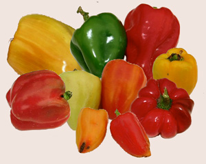 Sweet peppers come in a rainbow of colors and shapes.