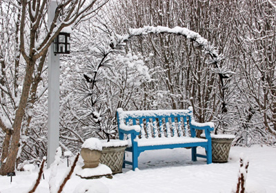 Interest in a winter garden comes from hardscaping and plants.