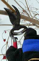 Using the right tools makes pruning easier.