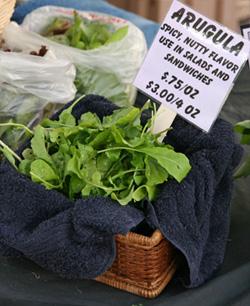 Arugula for sale at farmer's market.