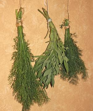 Hang bundles of sturdy herbs to air dry.
