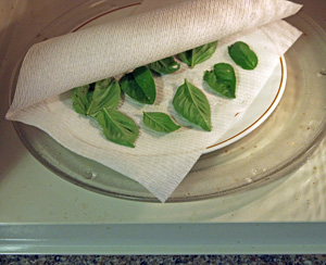 Small quantities of herbs can be dried in a microwave.