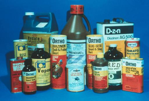 There are many chemical insecticides.