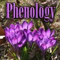 Phenology and Gardening Title Image