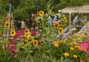 Most gardens are designed for their visual appeal.