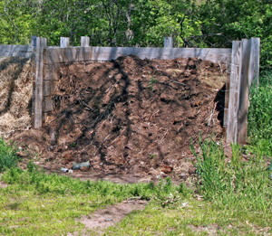 Compost is one way to add organic matter to your soil.