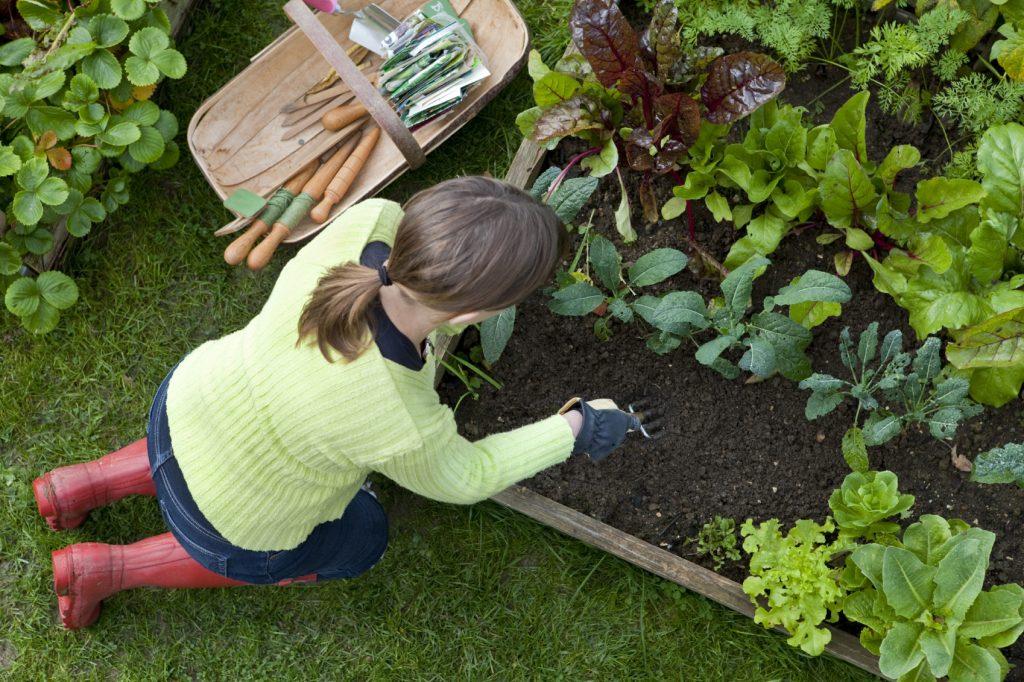 Хозяин хозяйка сад огород дача дом