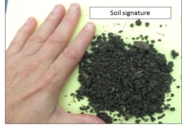 soil signature of jumping worm