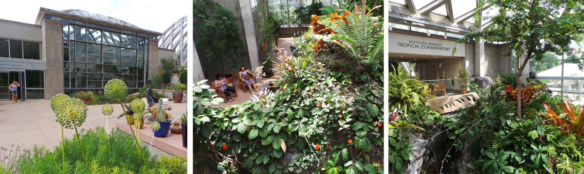 The indoor Marnie's Pavilion (L) showcases blooming tropical plants (C) adjacent to the Tropical Conservatory (R).