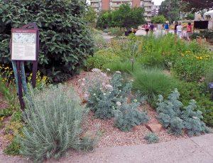 The Plant Select Garden.