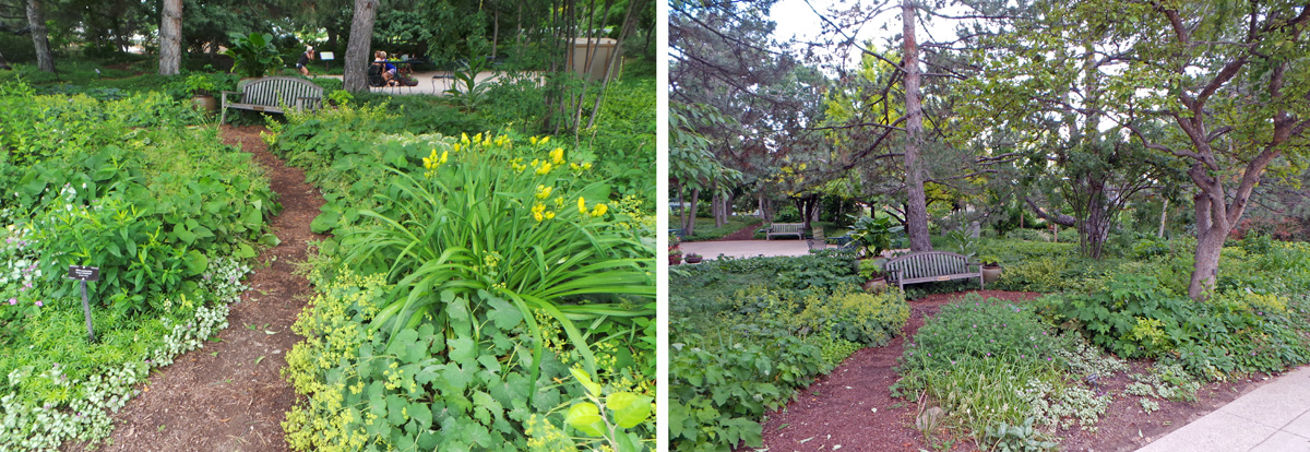 Shady Lane (L) demonstrates plants that flourish in the shade (R).