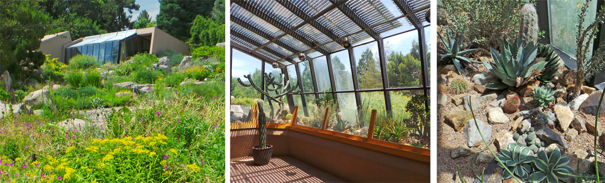 The small Cactus and Succulent House (L) houses many desert-adapted species (C and R).
