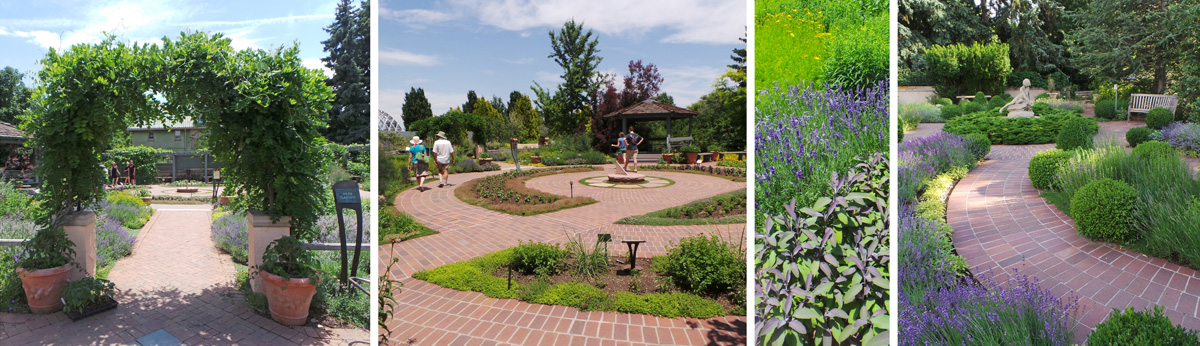Enter the Herb Garden through a living arch (L), walking wide brick paths (LC) to see the many herbs (RC) in that garden and the adjacent Knot Garden (R).