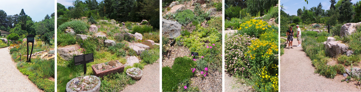 The Rock Garden features plants from alpine regions world-wide.