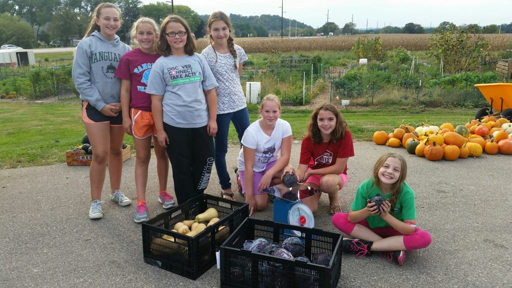 Girl Scouts weight their garden harvest with equipment provided by Dane County Master Gardener Volunteers.