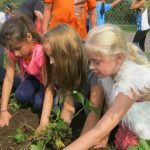 Students at Webster Elementary in in Burnett County get their hands dirty with the supervision of Master Gardener Volunteers.