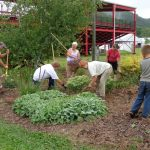 Master Gardener Volunteers prep the county fairgrounds.