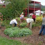 Master Gardener Volunteers prep the county fairgrounds.