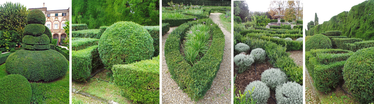 Evergreen plants of a variety of shades of green, silver, bronze or gold are manicured into geometric shapes.