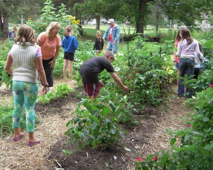 adults and kids working in the garden