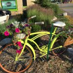 image of a bicycle with flowers
