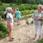 volunteers in garden