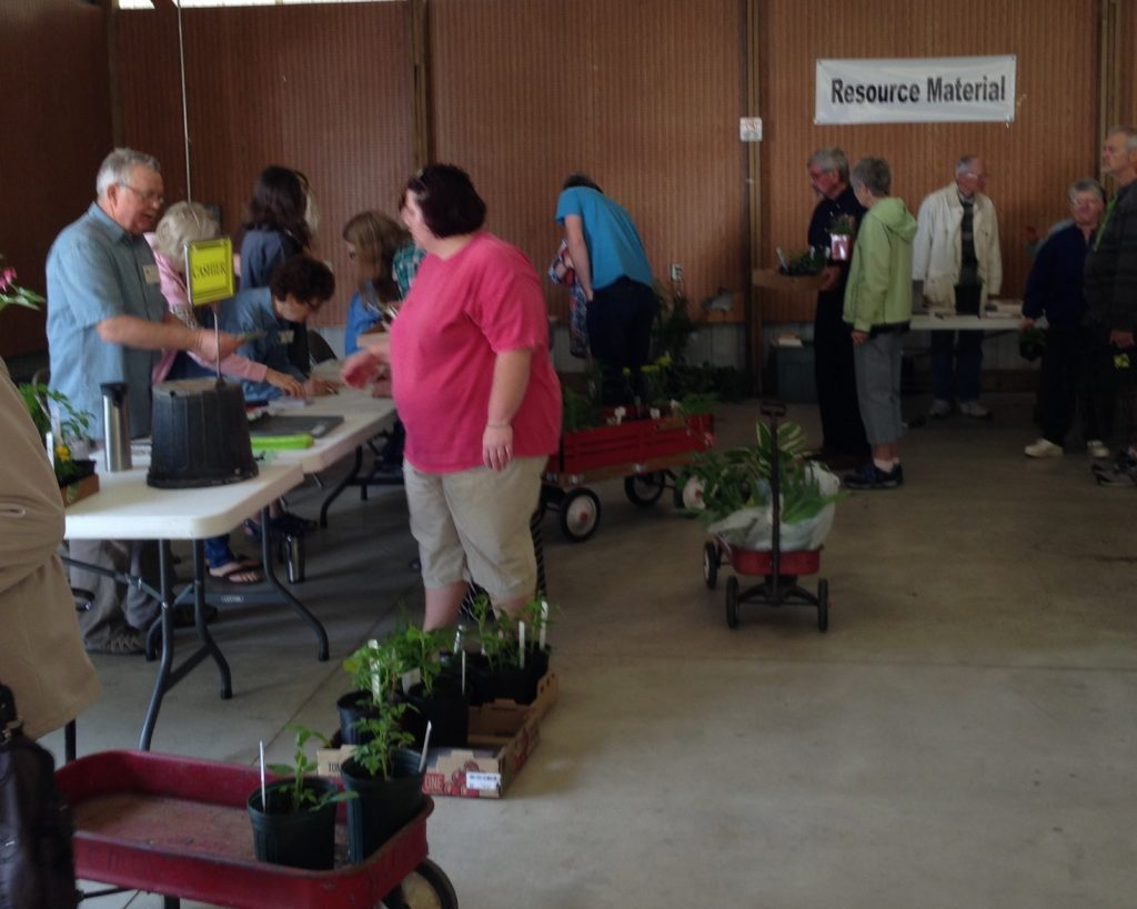 image of people at plant sale