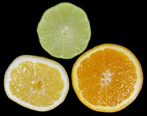 Most citrus is descended from four ancestral species.