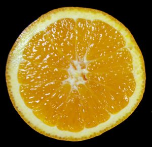 Citrus fruits are a hesperidium, a specialized type of berry with a leathery rind.