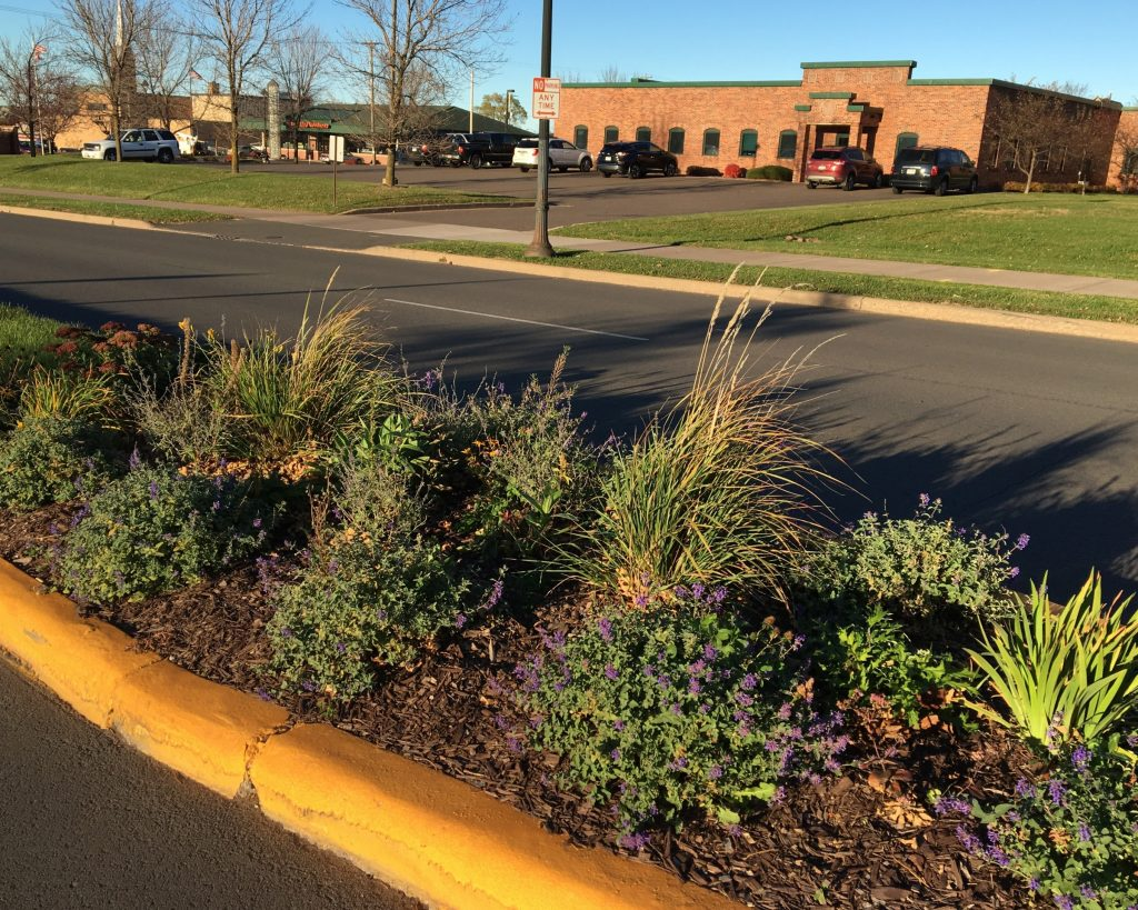 image of parkway planting